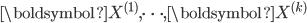 \boldsymbol{X}^{(1)},\cdots,\boldsymbol{X}^{(k)}
