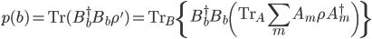 \displaystyle p(b) = {\rm Tr}(B^\dagger_bB_b\rho') = {\rm Tr}_B\left\{B^\dagger_bB_b\left({\rm Tr}_A\sum_m A_m\rho A^\dagger_m\right)\right\}