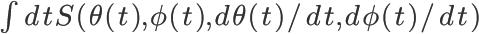 \huge \int dt S(\theta(t), \phi(t), d\theta(t)/dt, d\phi(t)/dt)