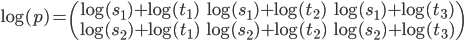 \log(p)=\begin{pmatrix}\log(s_1)+\log(t_1)&\log(s_1)+\log(t_2)&\log(s_1)+\log(t_3)\\\log(s_2)+\log(t_1)&\log(s_2)+\log(t_2)&\log(s_2)+\log(t_3)\end{pmatrix}
