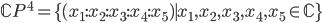 \mathbb{C}P^4=\{(x_1:x_2:x_3:x_4:x_5)\mid x_1,x_2,x_3,x_4,x_5\in \mathbb{C}\}