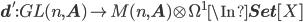{\bf d}': GL(n, {\bf A}) \to M(n, {\bf A})\otimes \Omega^1 \In {\bf Set}[X]