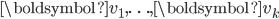 {\displaystyle \boldsymbol{v_1},\ldots,\boldsymbol{v_k} }