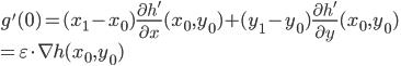 {g'(0)=(x_1-x_0)\frac{\partial h'}{\partial x}(x_0,y_0)+(y_1-y_0)\frac{\partial h'}{\partial y}(x_0,y_0)\\=\varepsilon \cdot \nabla h(x_0,y_0)}