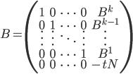 B = \begin{pmatrix} 1 & 0 & \cdots & 0 & B^k \\ 0 & 1 & \cdots & 0 & B^{k-1} \\ \vdots & \vdots & \ddots & \vdots & \vdots \\ 0 & 0 & \cdots & 1 & B^1 \\ 0 & 0 & \cdots & 0 & -tN \end{pmatrix}