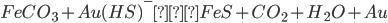 FeCO_3+Au(HS)^-→FeS+CO_2+H_2O+Au
