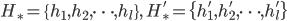 H_{\ast}=\{h_1, h_2, \dots, h_l\}, \quad H_{\ast}'=\{h_1', h_2', \dots, h_l'\}