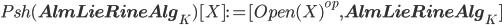 Psh({\bf AlmLieRineAlg}_K)[X] := [Open(X)^{op}, {\bf AlmLieRineAlg}_K]