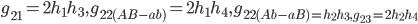 g_{21}=2h_1h_3,g_{22(AB-ab)}=2h_1h_4,g_{22(Ab-aB)=h_2h_3,g_{23}=2h_2h_4