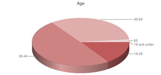 Pie chart showing respondents age