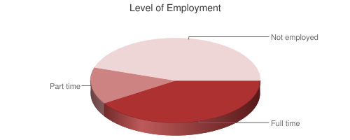 Pie Chart of Level of Employment